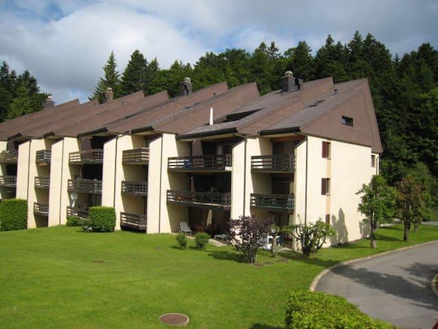 Cosy mountain-top studio - Saint-Cergue - Квартира
