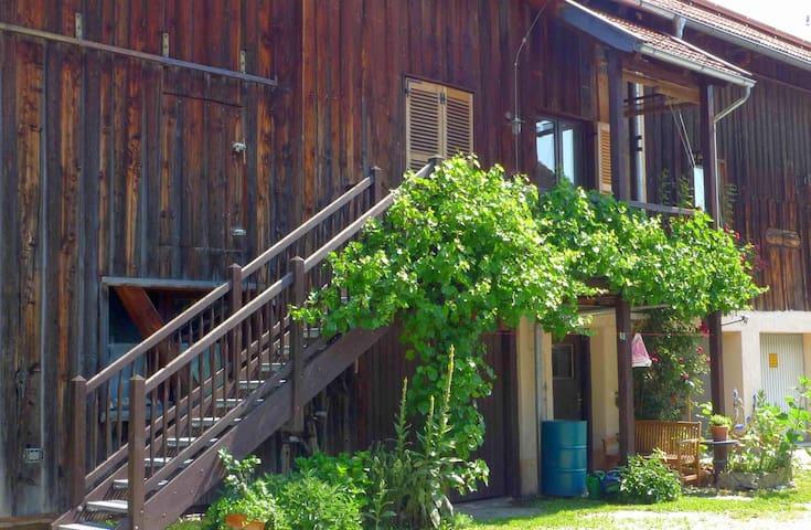 romantic appartment in bavaria - Polling - Huoneisto