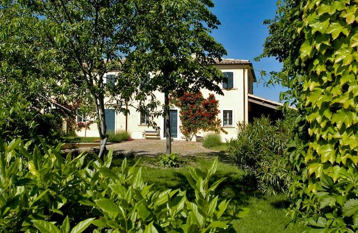 Casa Ezelina - appartamento 3 pax - Ginestreto - Квартира