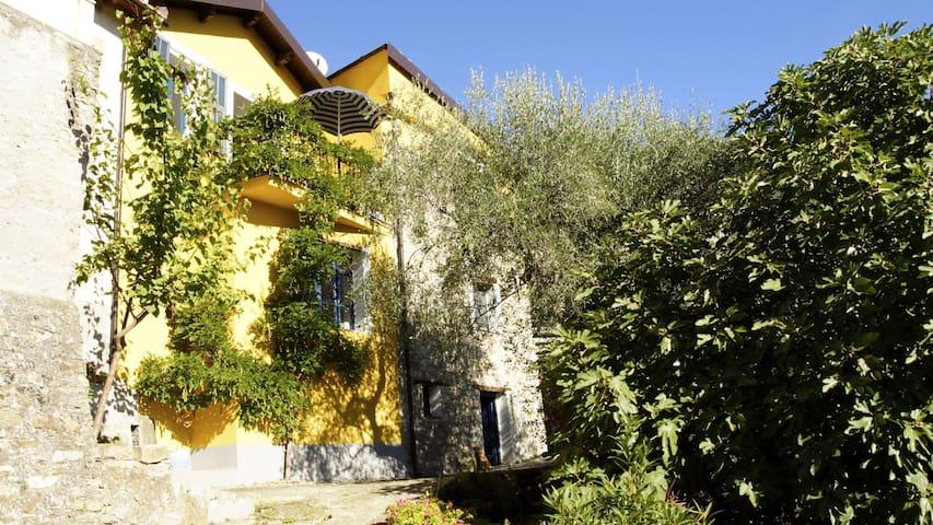 Dorfhaus mit Garten u. Weitblick - Borgomaro - Hus