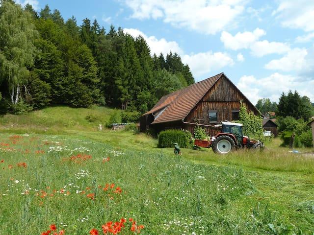 Holidays in the Franconian Switzerland (Bavaria) - Obertrubach - Apartamento