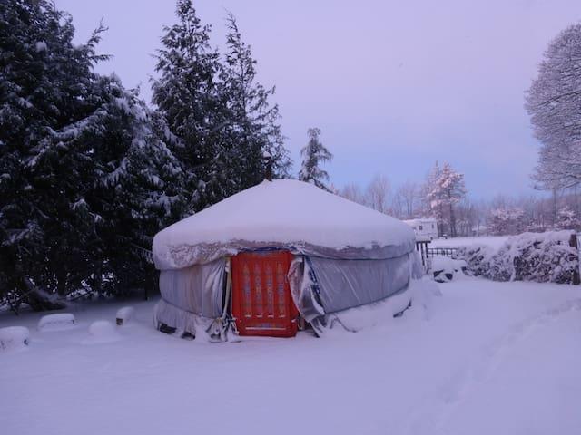 Mongolian Yurt with Heated bathroom - Buxton