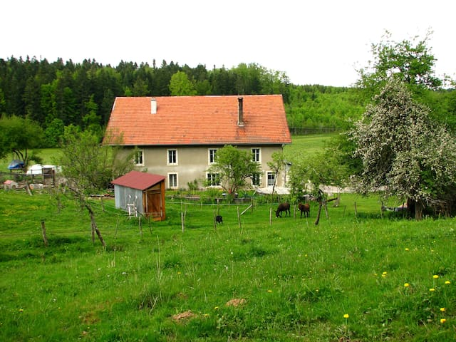 Bed and breakfast in Jura mountains - Arc-sous-Cicon - Appartement
