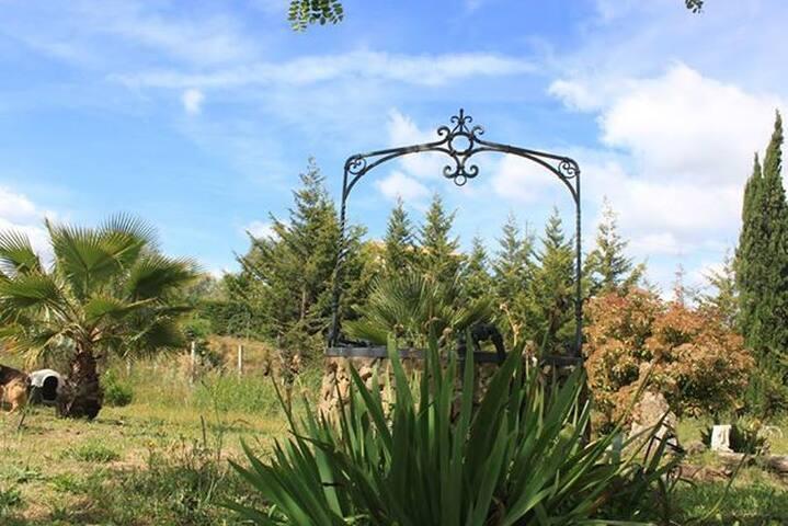 Accoglienti camere in campagna - Grammichele - Villa