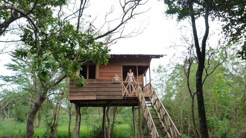 Treehouse Sigiri Queens Rest - Sigiriya - Домик на дереве