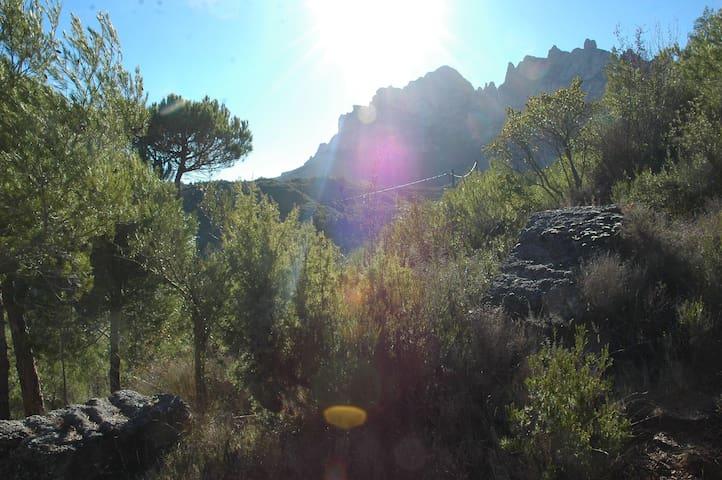 Climbers Cabin / Cabaña - Barcelona - Houten huisje