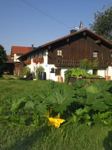 Almhüttenflair in urigem Bauernhaus - Taufkirchen - Ev