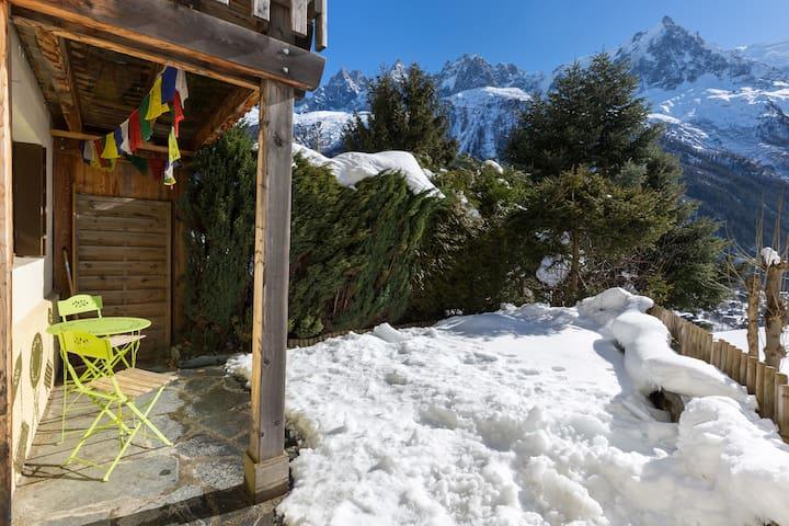 Garden Flat with Stunning Mont Blanc Views - Chamonix