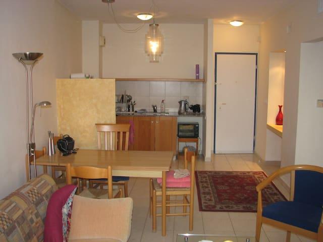 terrace seview apartment - Caesarea - Lägenhet