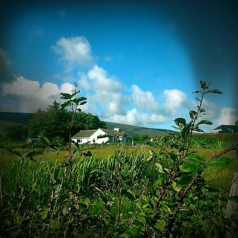 Traditional & Modern Irish cottage - Castlemaine - Casa de campo