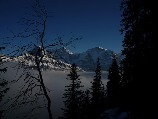 Peaceful Alpine village studio for2 - Lauterbrunnen - Apartemen