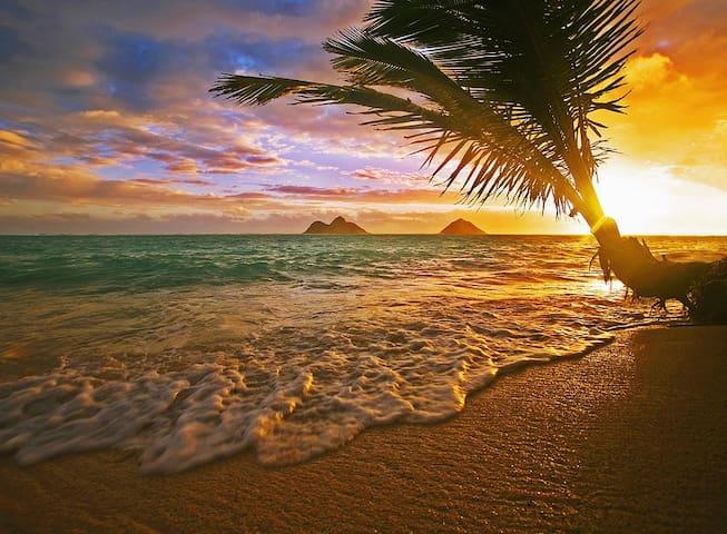 Sunset Dreams - Haleiwa - Huis