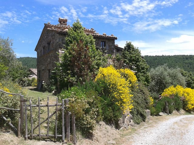 Romantic cottage with large garden - Piegaro - Casa