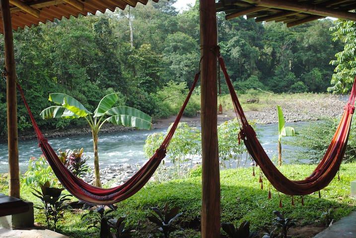 Jungle Riverside Hostel - Sarapiqui - Podkroví