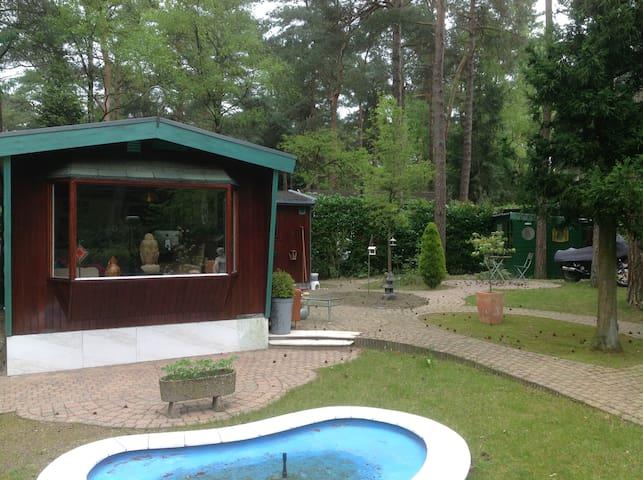 Chalet in bosrijk Oisterwijk  - Oisterwijk - Alpstuga