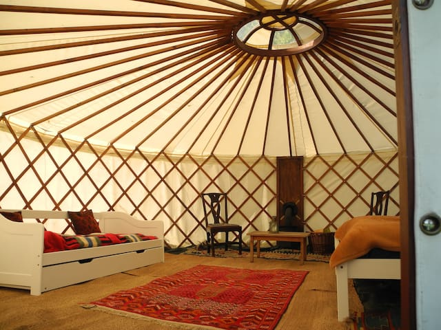 Stapleton Farm Yurt near Aylsham - Aylsham