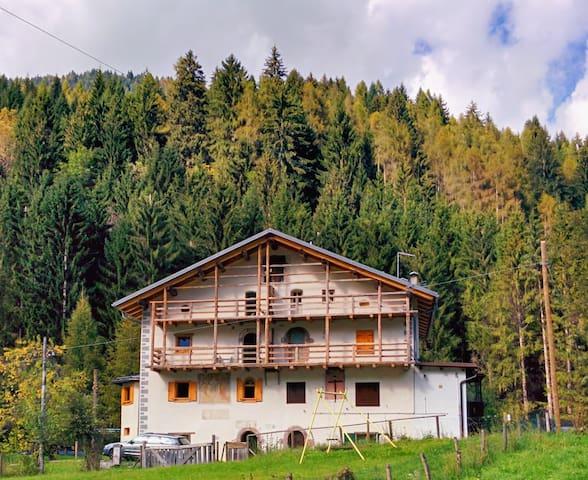 Appartamento in montagna Dolomiti - Canale D'agordo - Departamento
