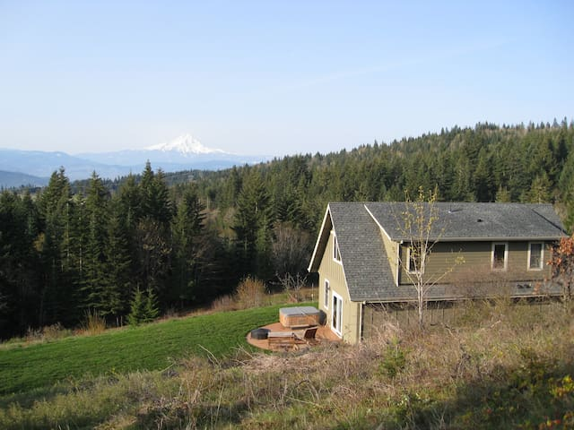 View of Mt. Hood, Private, Pet OK - White Salmon