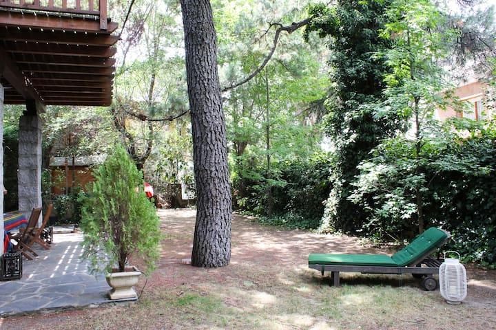 Suite en la Sierra de Madrid - Galapagar - Дом