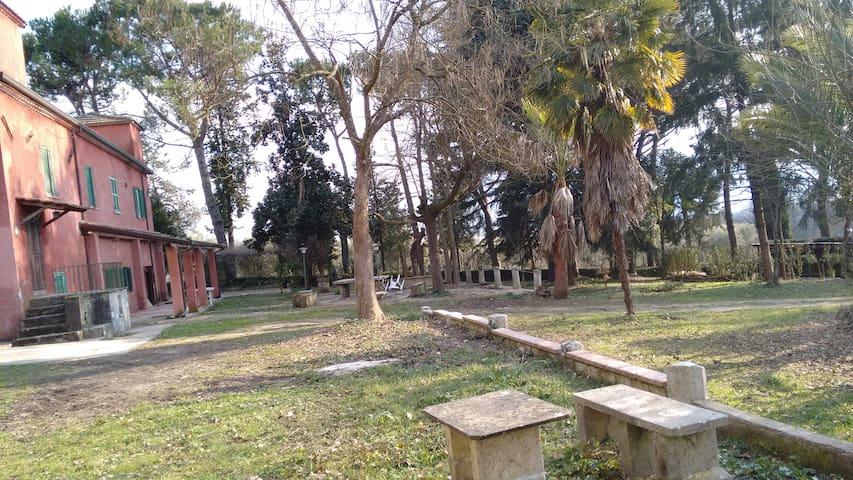 Ancient Country House - Pofi - Villa