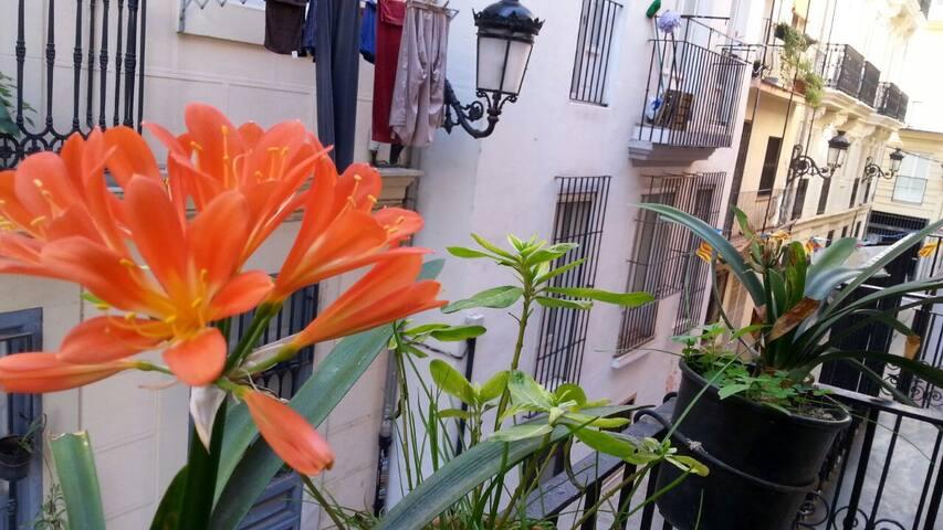 Habitación Valencia centro1 ciudad. - València - Oda + Kahvaltı