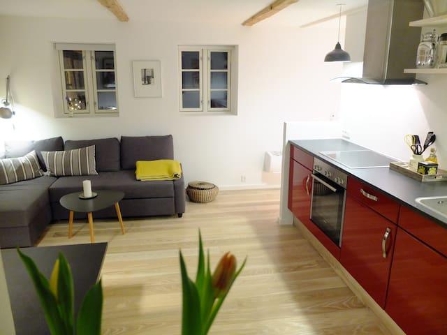 Modern apartment with lovely garden - Hillerød - Appartement