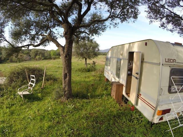 Spacious caravan in the nature - Facinas - Дом на колесах