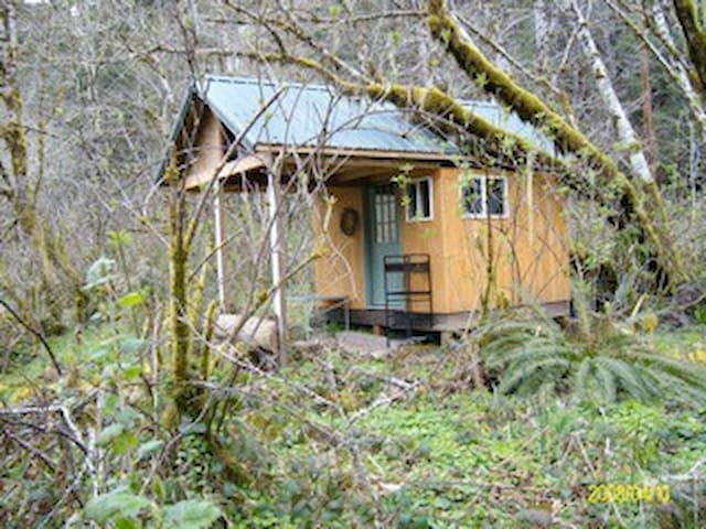 COHO CABANA: Camp Cabin on Creek - Walton - Houten huisje