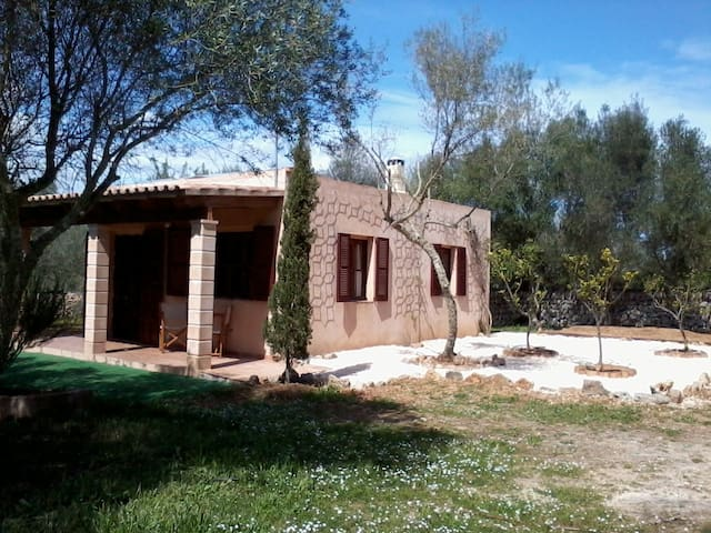 Countryside bungalow in Ses Salines - Ses Salines - Dom