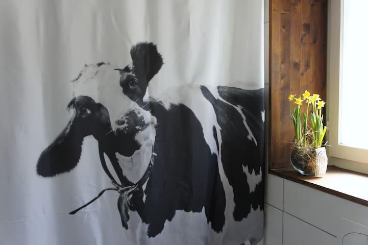 *Low season Specials*The Mad Cow holiday Apartment - Bönigen - Casa