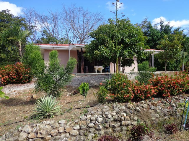House in unique Blue Longevity zone - Nicoya - Casa