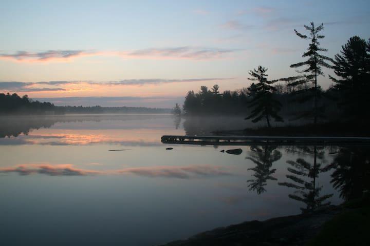 The Dragonfly - Muskoka - Tea Lake - Coldwater