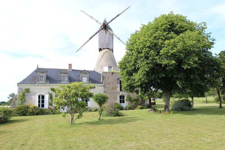 Moulin à vent (Wind mill) - Saint-Rémy-la-Varenne - Casa