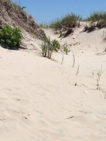 Large Cozy Private Beach House - Tiverton - Huis