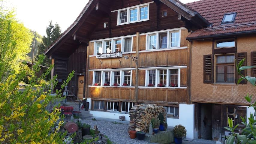 Bauernhaus mit Bildhauer Ambiente - Lutzenberg - Hus
