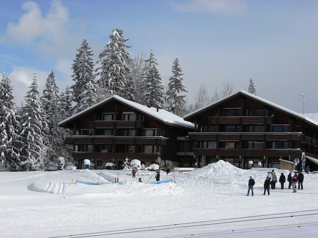 nature park in Bernese Oberland - Horboden - Appartement