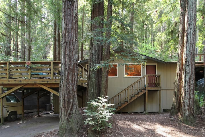 Country Comfort in Redwood Forest - Guerneville - Huis