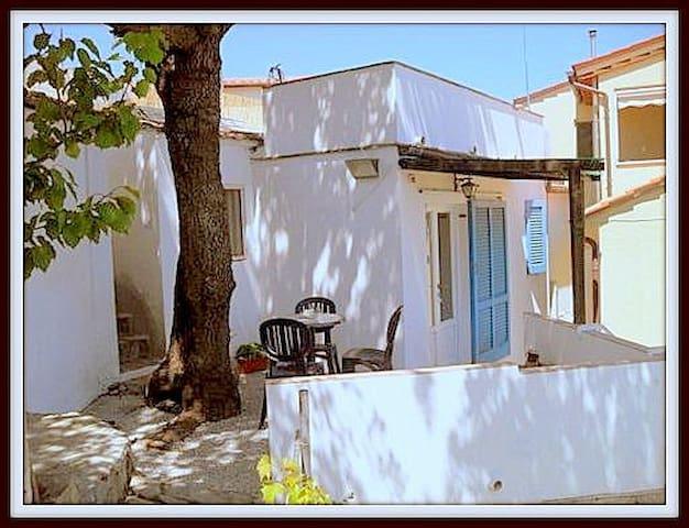 Holidays to 'Elba ... - Campo nell'Elba - Casa