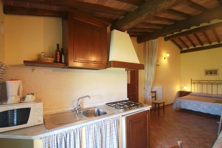 Lovely Studio in Siena countryside - Sovicille - Apartamento