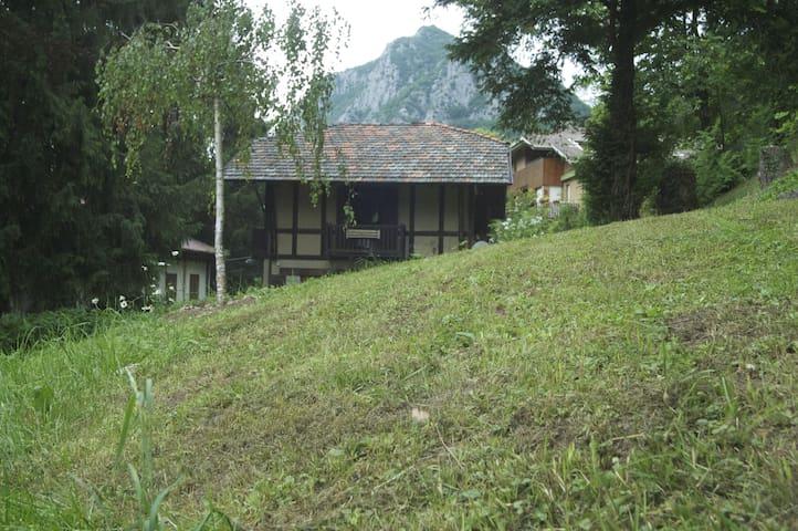 Chalets in a small park - Barzio - Kabin