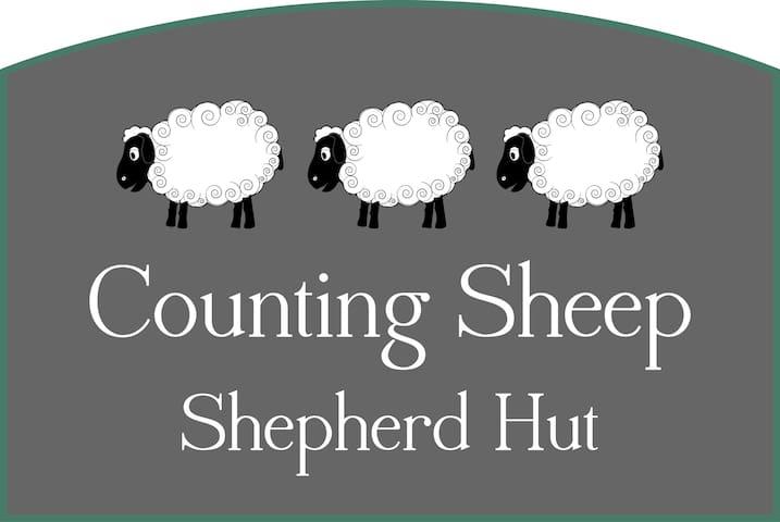 Counting Sheep Shepherd Hut - Chipstable - Hut