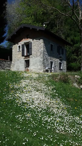 PACELUCE, flat in stones house in the green - Veglio - Apartamento