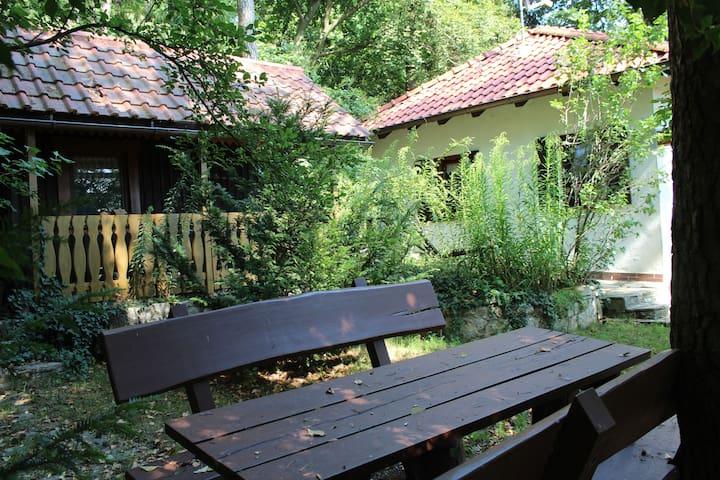 La casa rural perfecta - Nennslingen - Casa