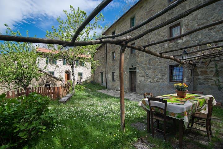 La casa nel bosco-Canal di Sasso - Posola