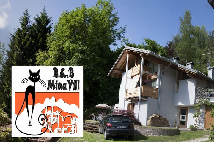 offerta last-minute ... - Fiera di Primiero - Bed & Breakfast