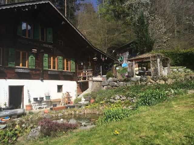 Nature&Breakfast&Pets&a little room - Diemtigen - Casa