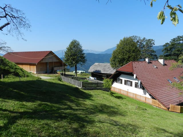 Visočnik Tourism Farm, double room - Ljubno ob Savinji
