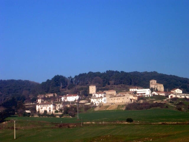 Pamplona: guest house by a 14th Century tower - Olza - Rumah