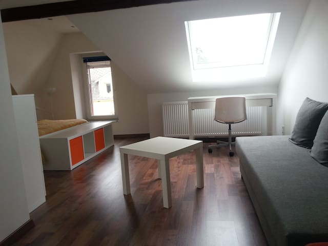 Private room with private bathroom - Pétange - Huis