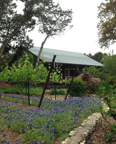 Grey Forest Vineyard Cabin - Views & Charm - Helotes - Cabaña